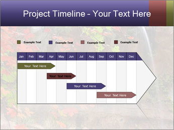 0000075977 PowerPoint Template - Slide 25