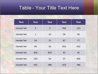 0000075977 PowerPoint Templates - Slide 55