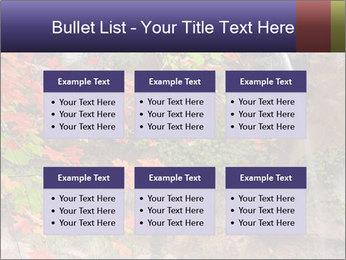 0000075977 PowerPoint Template - Slide 56
