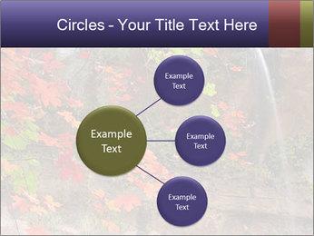 0000075977 PowerPoint Template - Slide 79