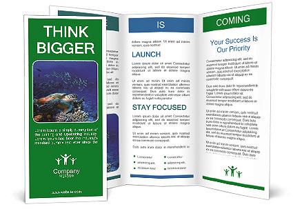 0000075978 Brochure Templates