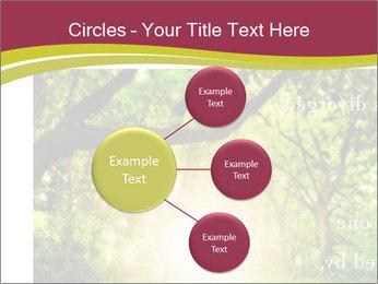 0000075980 PowerPoint Templates - Slide 79