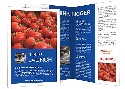 0000075985 Brochure Templates