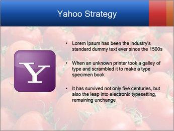0000075985 PowerPoint Templates - Slide 11