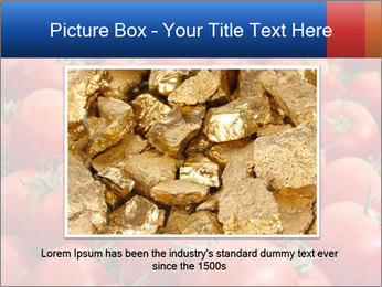 0000075985 PowerPoint Templates - Slide 15