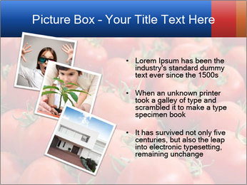 0000075985 PowerPoint Template - Slide 17