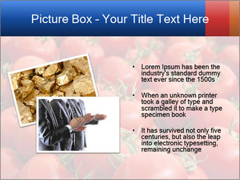0000075985 PowerPoint Template - Slide 20