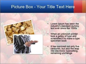 0000075985 PowerPoint Templates - Slide 20