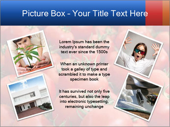 0000075985 PowerPoint Templates - Slide 24