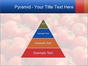 0000075985 PowerPoint Templates - Slide 30