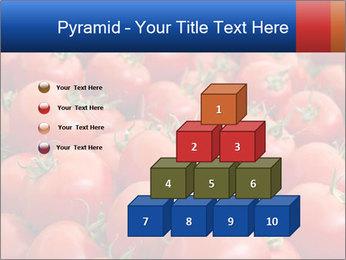 0000075985 PowerPoint Templates - Slide 31