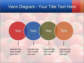 0000075985 PowerPoint Templates - Slide 32