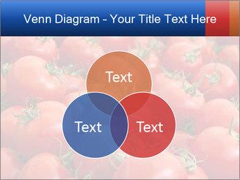 0000075985 PowerPoint Templates - Slide 33