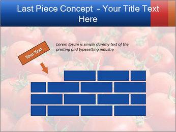 0000075985 PowerPoint Templates - Slide 46