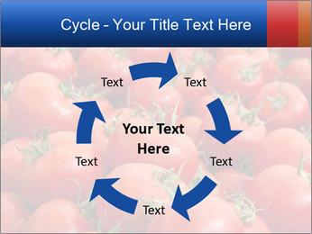 0000075985 PowerPoint Templates - Slide 62