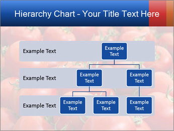 0000075985 PowerPoint Templates - Slide 67
