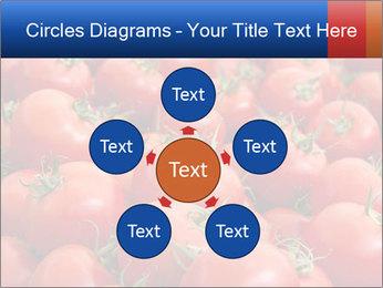 0000075985 PowerPoint Templates - Slide 78