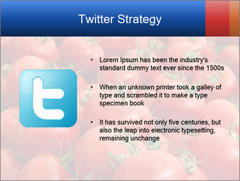 0000075985 PowerPoint Templates - Slide 9