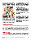 0000075985 Word Templates - Page 4