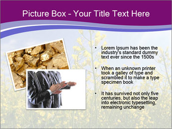 0000075987 PowerPoint Template - Slide 20
