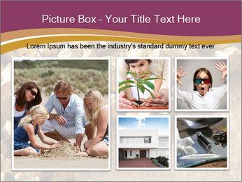 0000075990 PowerPoint Templates - Slide 19
