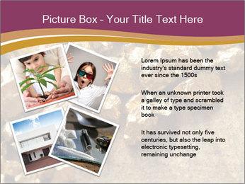 0000075990 PowerPoint Templates - Slide 23