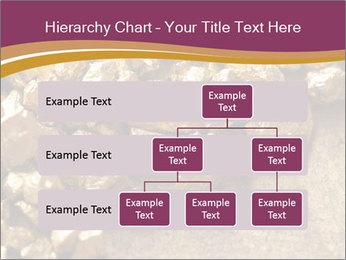 0000075990 PowerPoint Templates - Slide 67