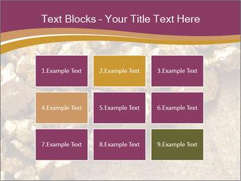 0000075990 PowerPoint Templates - Slide 68