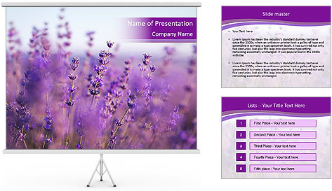 0000075993 PowerPoint Template