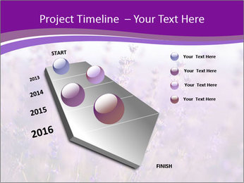 0000075993 PowerPoint Template - Slide 26