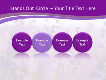 0000075993 PowerPoint Template - Slide 76