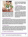 0000075993 Word Templates - Page 4