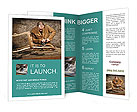 0000075998 Brochure Templates