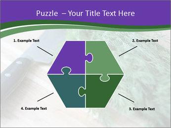 0000075999 PowerPoint Template - Slide 40