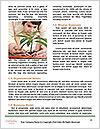 0000076012 Word Templates - Page 4