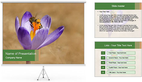 0000076017 PowerPoint Template