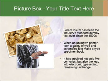 0000076017 PowerPoint Template - Slide 20