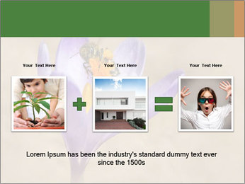 0000076017 PowerPoint Template - Slide 22