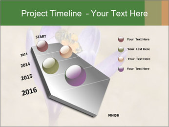 0000076017 PowerPoint Templates - Slide 26