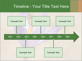 0000076017 PowerPoint Templates - Slide 28