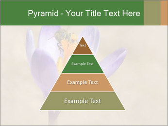 0000076017 PowerPoint Templates - Slide 30
