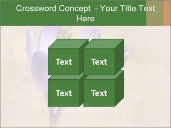 0000076017 PowerPoint Templates - Slide 39