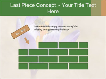 0000076017 PowerPoint Template - Slide 46
