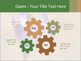 0000076017 PowerPoint Templates - Slide 47