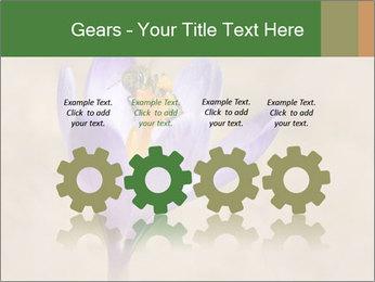 0000076017 PowerPoint Templates - Slide 48
