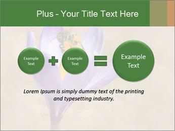0000076017 PowerPoint Templates - Slide 75