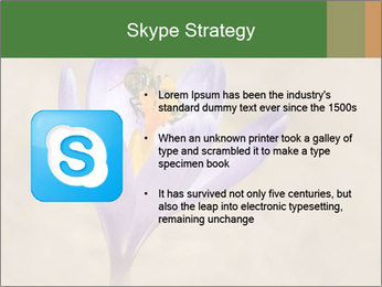 0000076017 PowerPoint Template - Slide 8