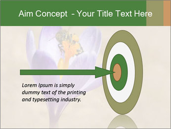0000076017 PowerPoint Template - Slide 83