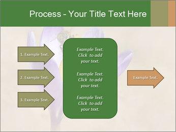 0000076017 PowerPoint Templates - Slide 85