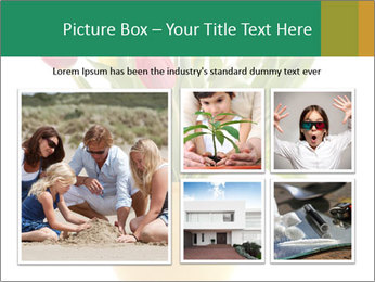 0000076018 PowerPoint Template - Slide 19